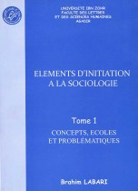 Éléments à la sociologie Tome 1